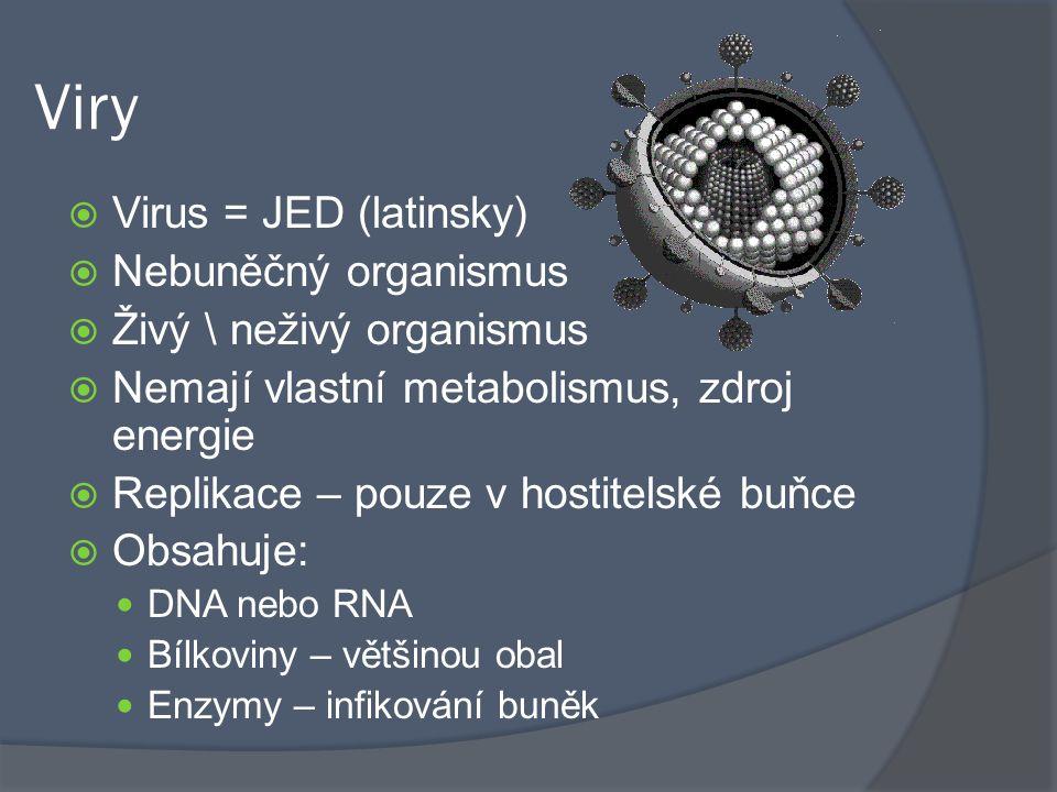 Viry Virus = JED (latinsky) Nebuněčný organismus
