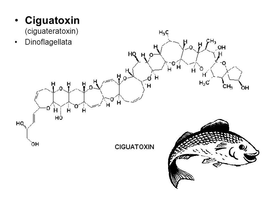 Ciguatoxin (ciguateratoxin)