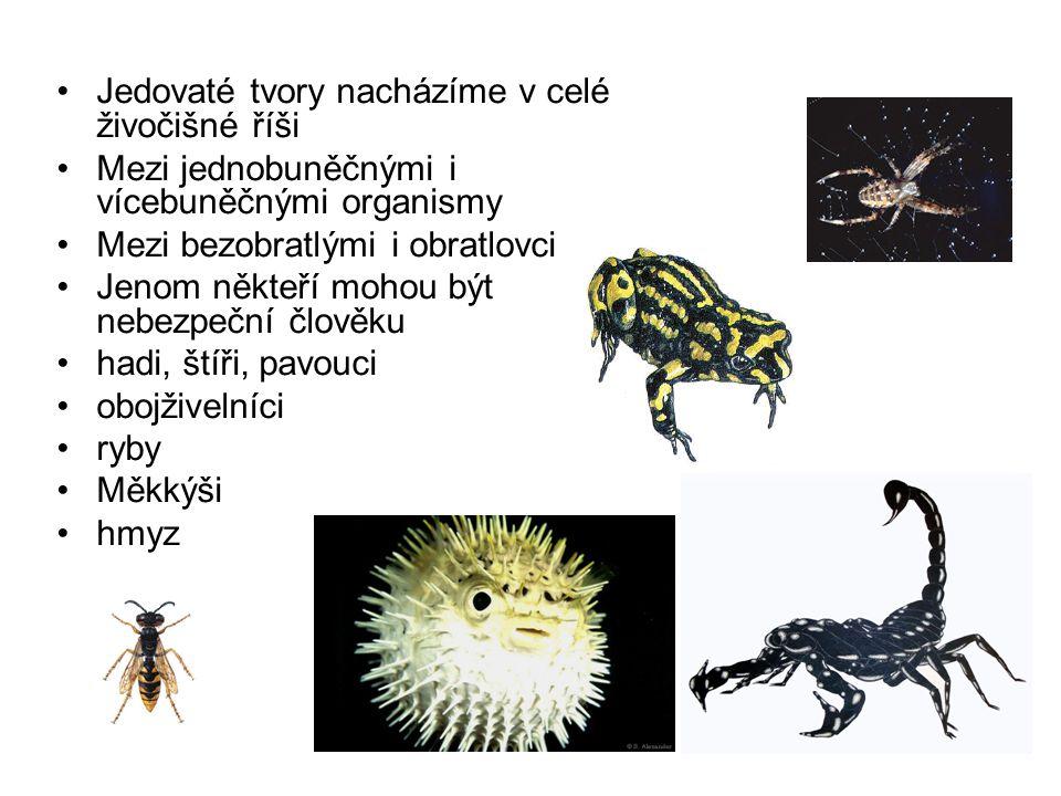 Jedovaté tvory nacházíme v celé živočišné říši