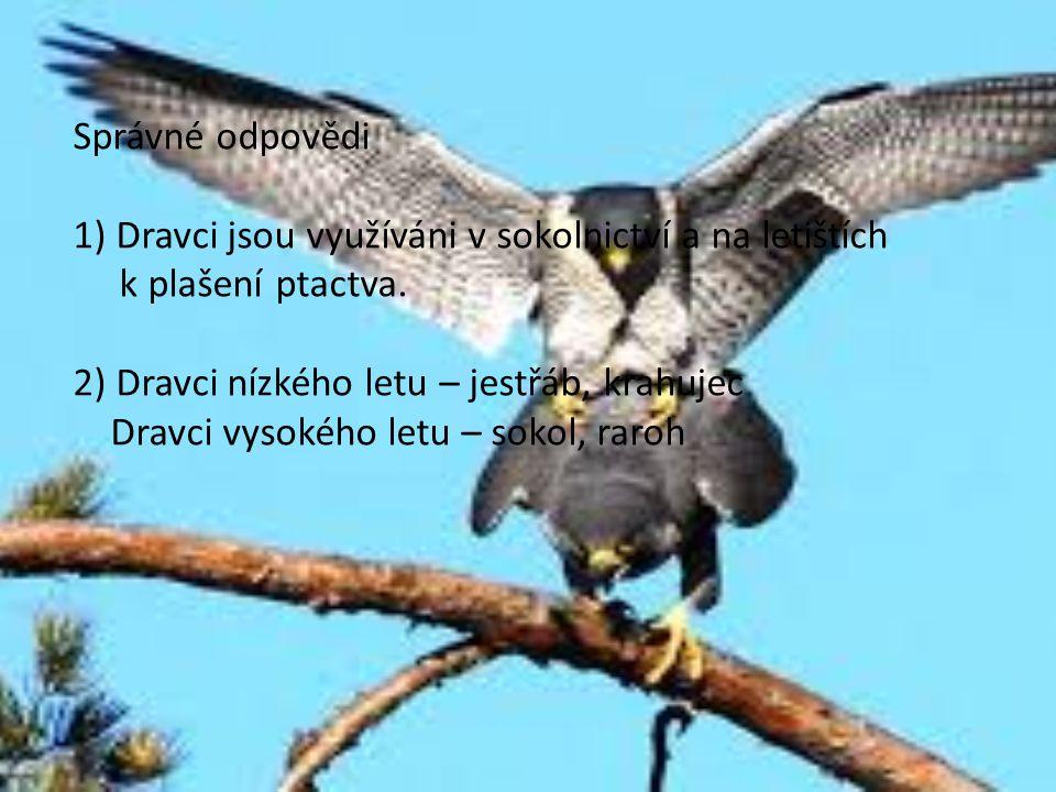 Správné odpovědi 1) Dravci jsou využíváni v sokolnictví a na letištích. k plašení ptactva. 2) Dravci nízkého letu – jestřáb, krahujec.