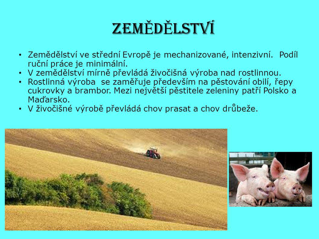 ZEMĚDĚLSTVÍ Zemědělství ve střední Evropě je mechanizované, intenzivní. Podíl ruční práce je minimální.