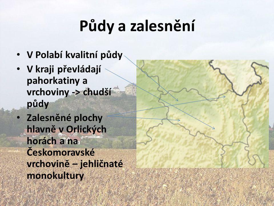 Půdy a zalesnění V Polabí kvalitní půdy