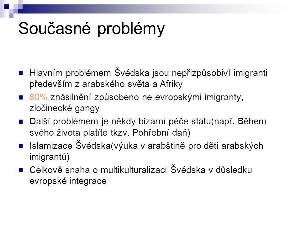 Současné problémy Hlavním problémem Švédska jsou nepřizpůsobiví imigranti především z arabského světa a Afriky.