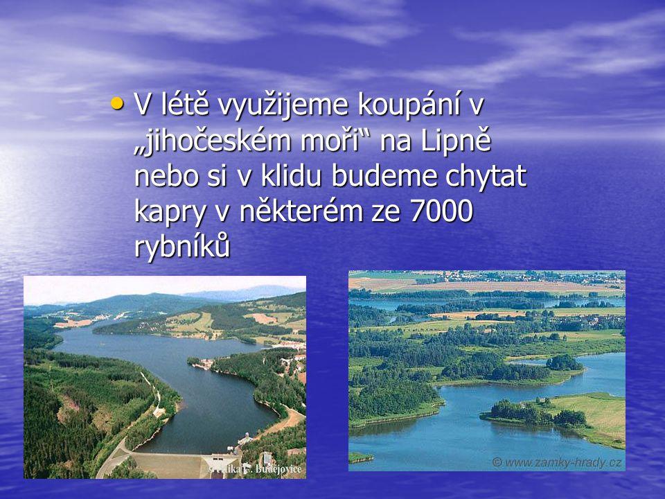 """V létě využijeme koupání v """"jihočeském moři na Lipně nebo si v klidu budeme chytat kapry v některém ze 7000 rybníků"""