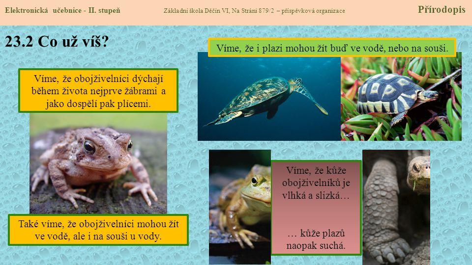 23.2 Co už víš Víme, že i plazi mohou žít buď ve vodě, nebo na souši.