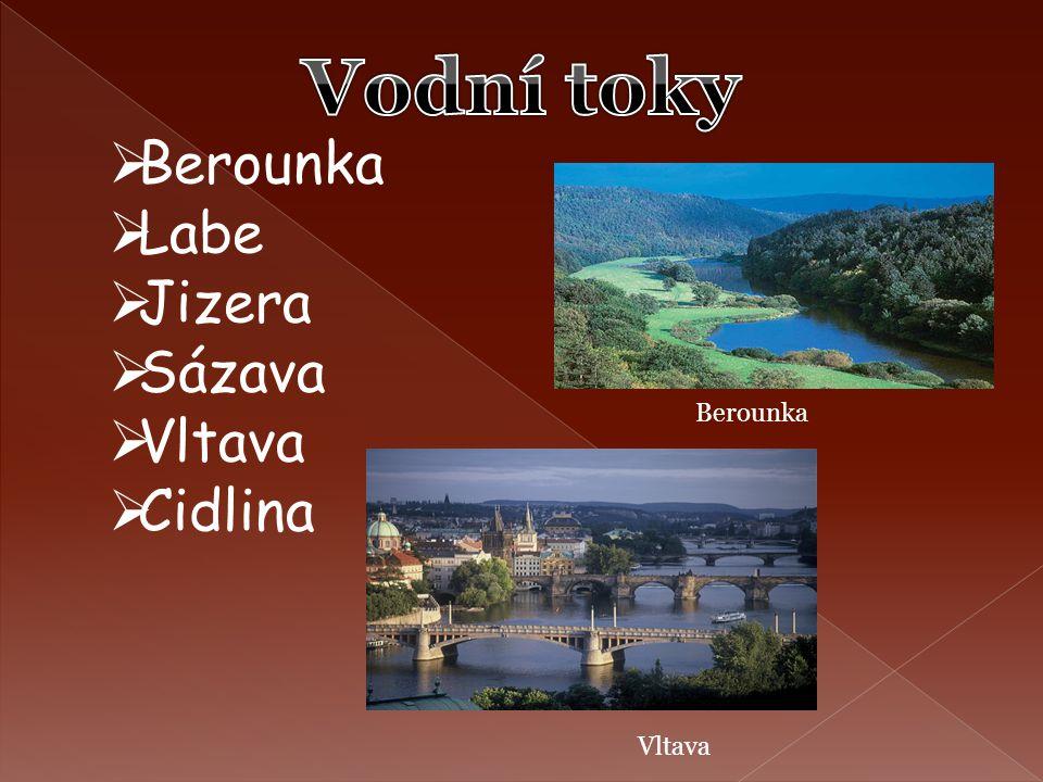 Vodní toky Berounka Labe Jizera Sázava Vltava Cidlina Berounka Vltava
