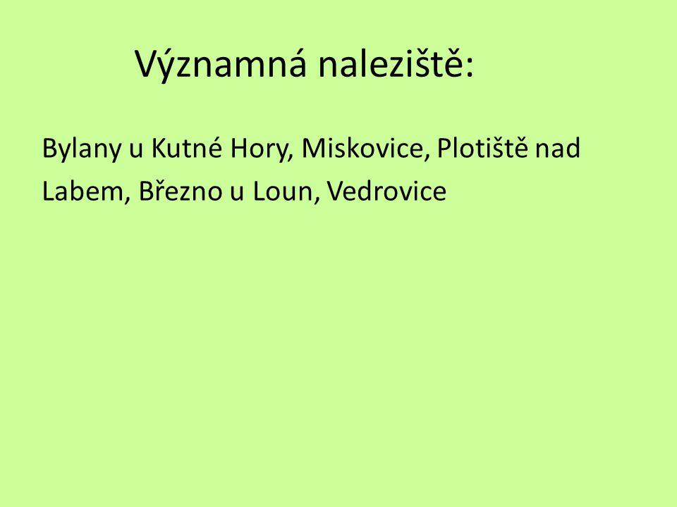 Významná naleziště: Bylany u Kutné Hory, Miskovice, Plotiště nad