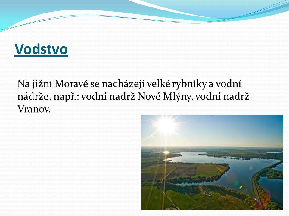 Vodstvo Na jižní Moravě se nacházejí velké rybníky a vodní nádrže, např.: vodní nadrž Nové Mlýny, vodní nadrž Vranov.