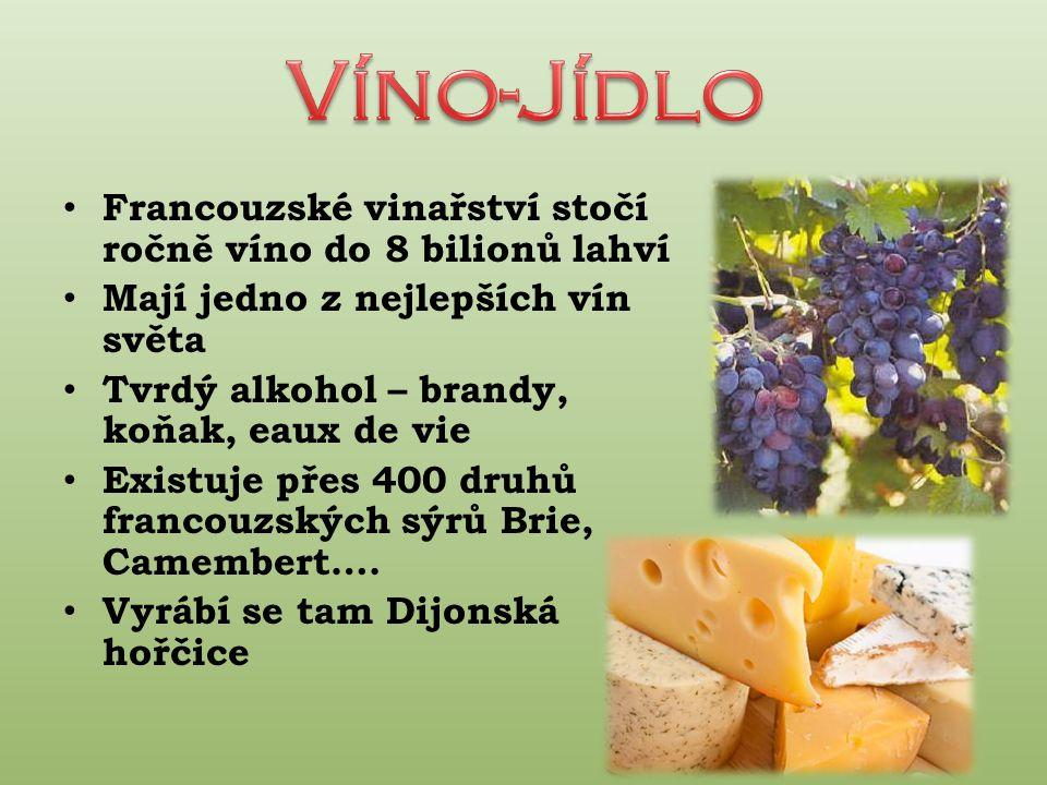 Víno-Jídlo Francouzské vinařství stočí ročně víno do 8 bilionů lahví