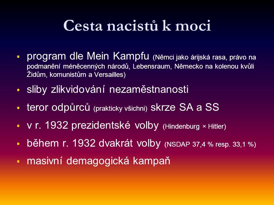 Cesta nacistů k moci