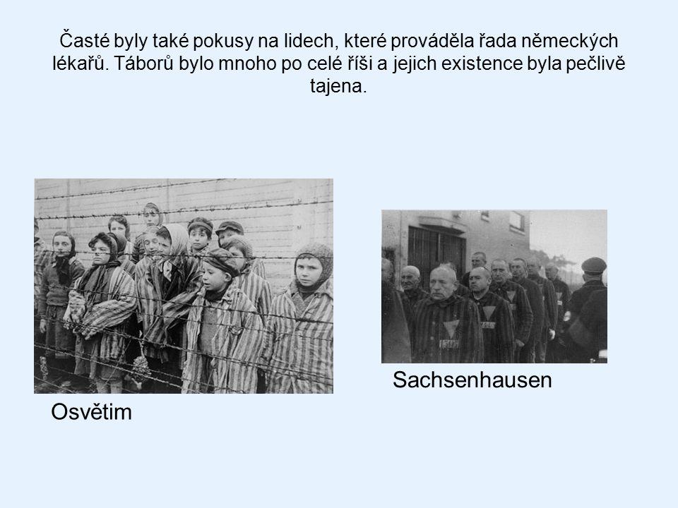 Sachsenhausen Osvětim