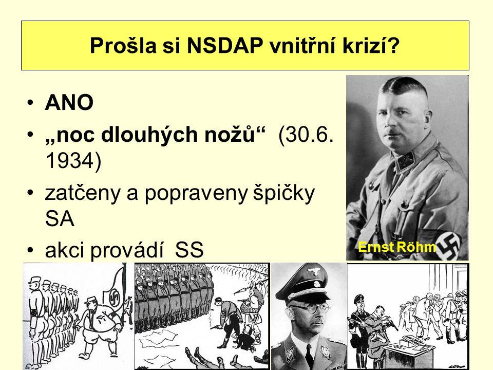 Prošla si NSDAP vnitřní krizí