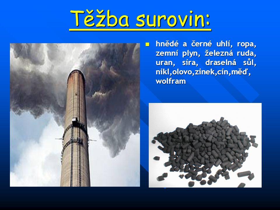 Těžba surovin: hnědé a černé uhlí, ropa, zemní plyn, železná ruda, uran, síra, draselná sůl, nikl,olovo,zinek,cín,měď, wolfram.