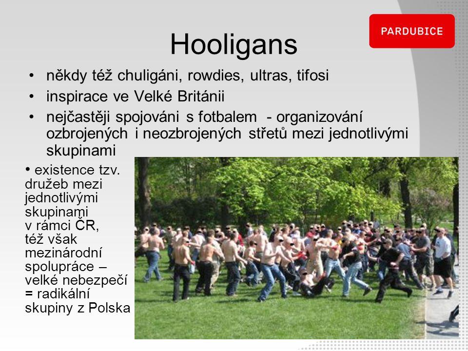 Hooligans někdy též chuligáni, rowdies, ultras, tifosi