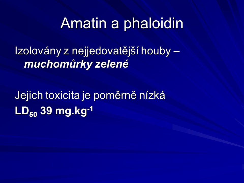 Amatin a phaloidin Izolovány z nejjedovatější houby – muchomůrky zelené. Jejich toxicita je poměrně nízká.