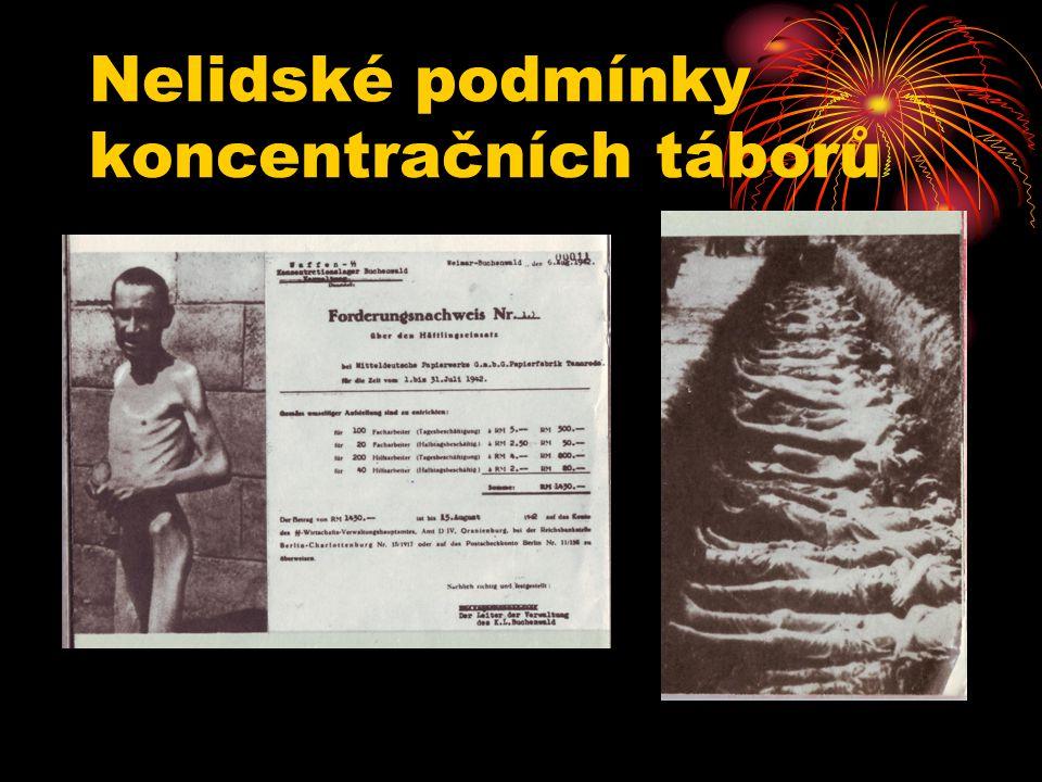 Nelidské podmínky koncentračních táborů