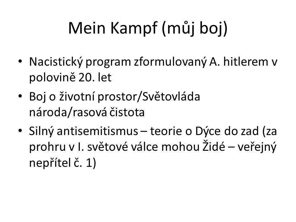 Mein Kampf (můj boj) Nacistický program zformulovaný A. hitlerem v polovině 20. let. Boj o životní prostor/Světovláda národa/rasová čistota.
