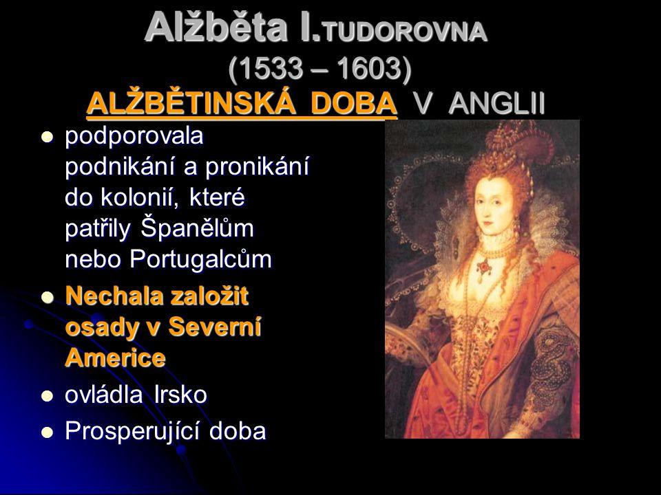 Alžběta I.TUDOROVNA (1533 – 1603) ALŽBĚTINSKÁ DOBA V ANGLII