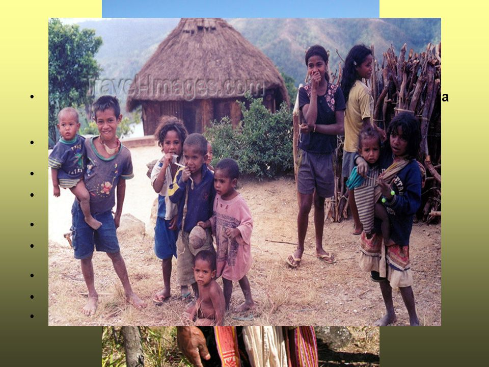 Obyvatelstvo Obyvatelé Východního Timoru pochází z Malajsie, Melanésie a Polinésie. Hustota zalidnění: 69 obyv./km2.