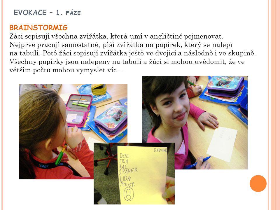 EVOKACE – 1. fáze BRAINSTORMIG. Žáci sepisují všechna zvířátka, která umí v angličtině pojmenovat.