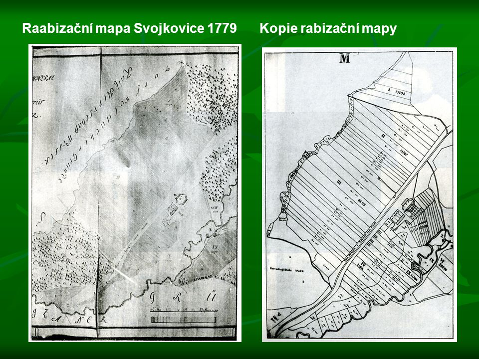 Raabizační mapa Svojkovice 1779