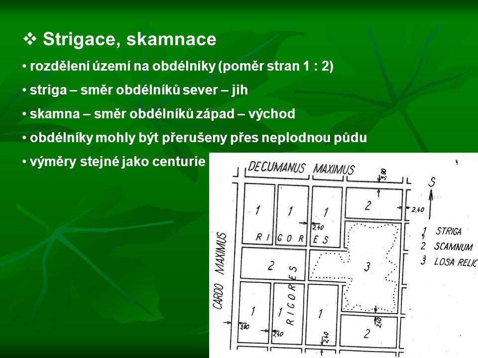 Strigace, skamnace rozdělení území na obdélníky (poměr stran 1 : 2)