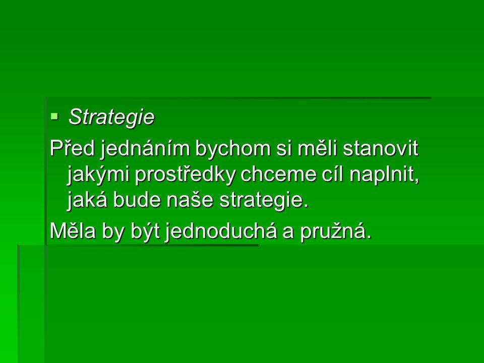 Strategie Před jednáním bychom si měli stanovit jakými prostředky chceme cíl naplnit, jaká bude naše strategie.