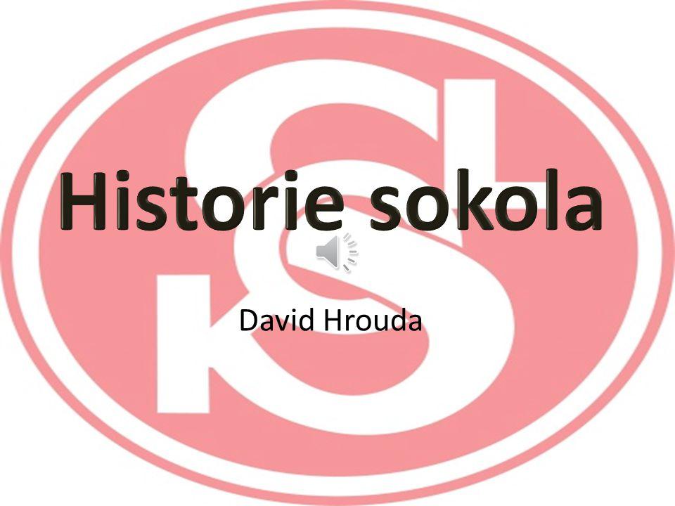 Historie sokola David Hrouda