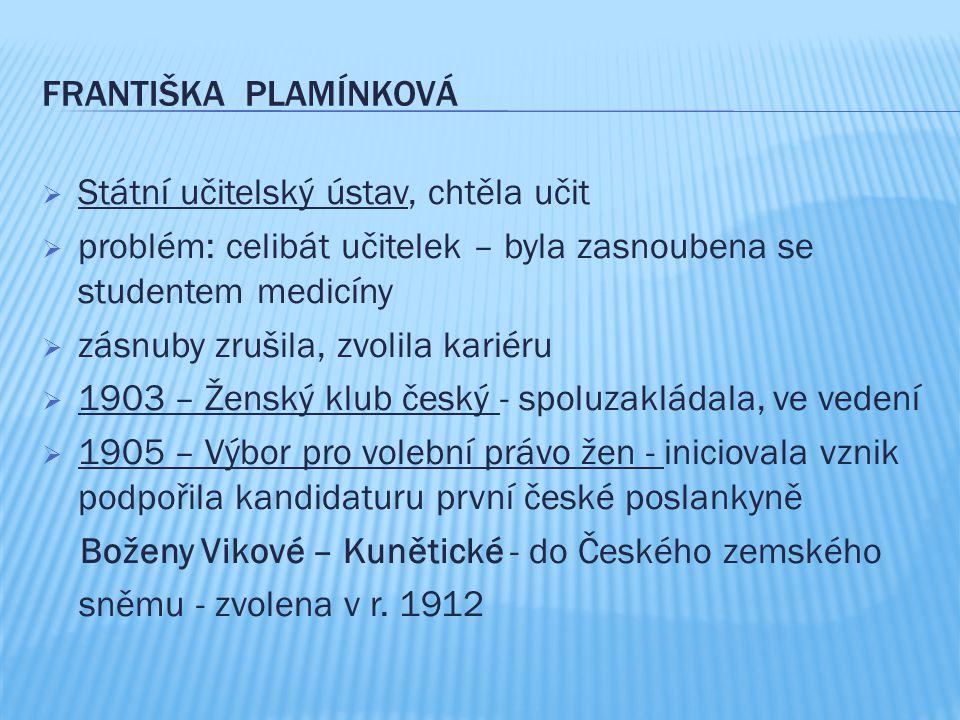 Františka PLAMÍNKOVÁ Státní učitelský ústav, chtěla učit. problém: celibát učitelek – byla zasnoubena se studentem medicíny.
