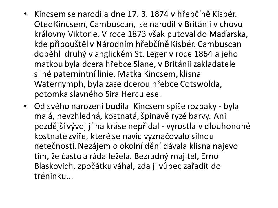Kincsem se narodila dne 17. 3. 1874 v hřebčíně Kisbér