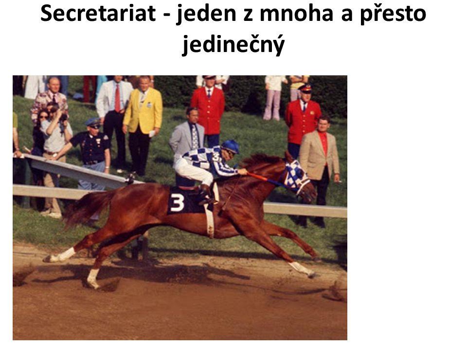 Secretariat - jeden z mnoha a přesto jedinečný