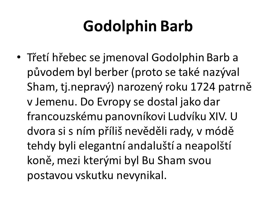 Godolphin Barb