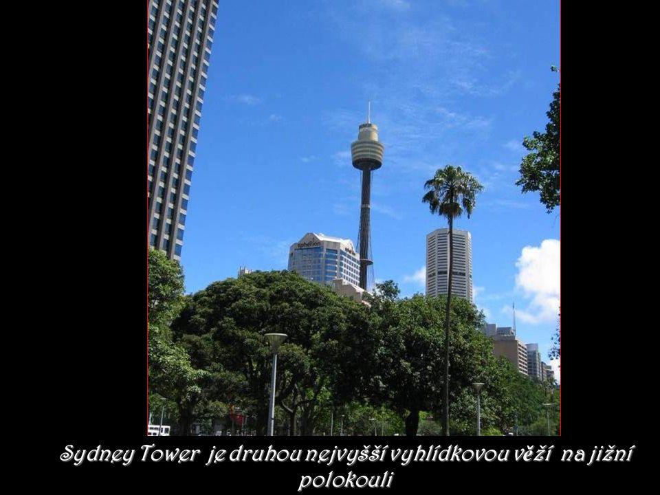 Sydney Tower je druhou nejvyšší vyhlídkovou věží na jižní polokouli