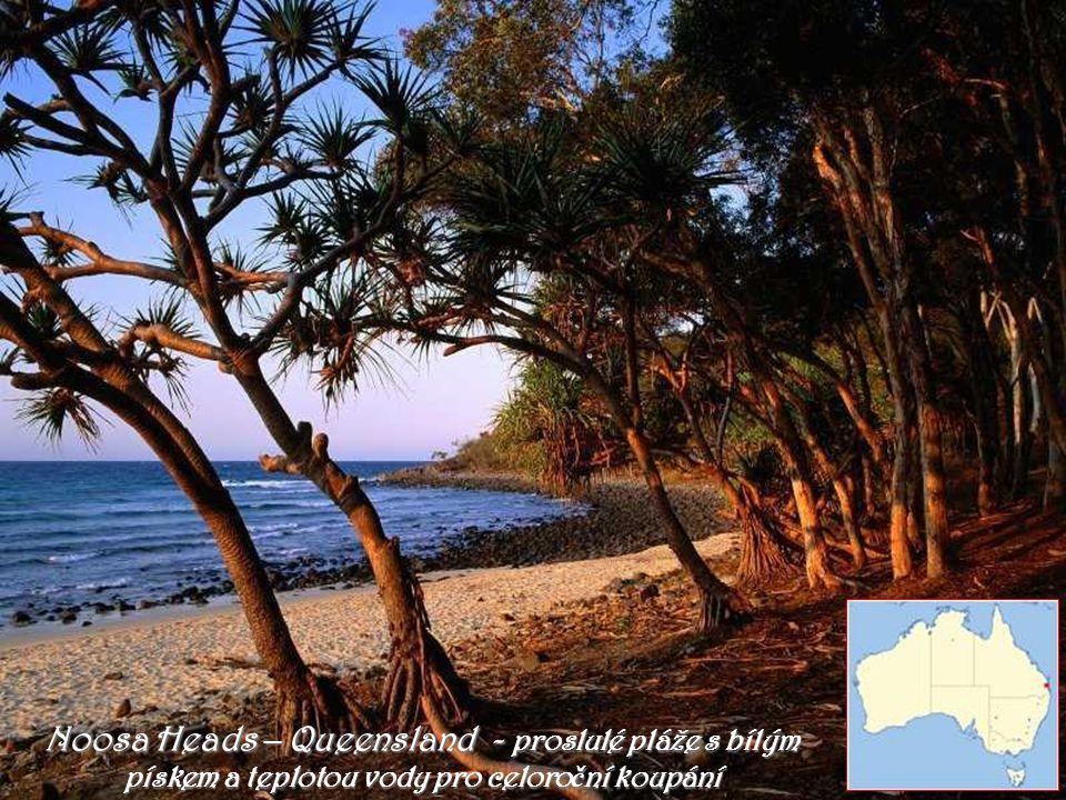 Noosa Heads – Queensland - proslulé pláže s bílým pískem a teplotou vody pro celoroční koupání