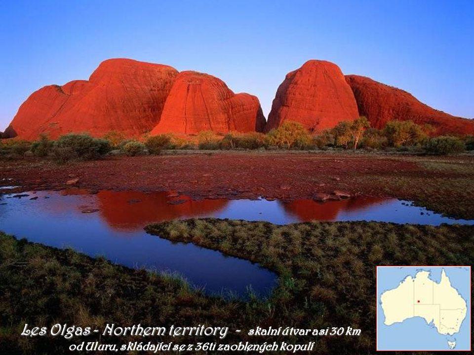Les Olgas - Northern territory - skalní útvar asi 30 km od Uluru, skládající se z 36ti zaoblených kopulí
