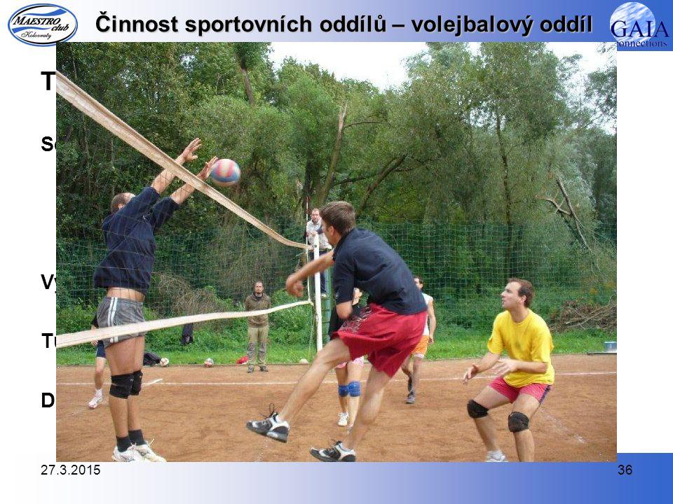 Činnost sportovních oddílů – volejbalový oddíl