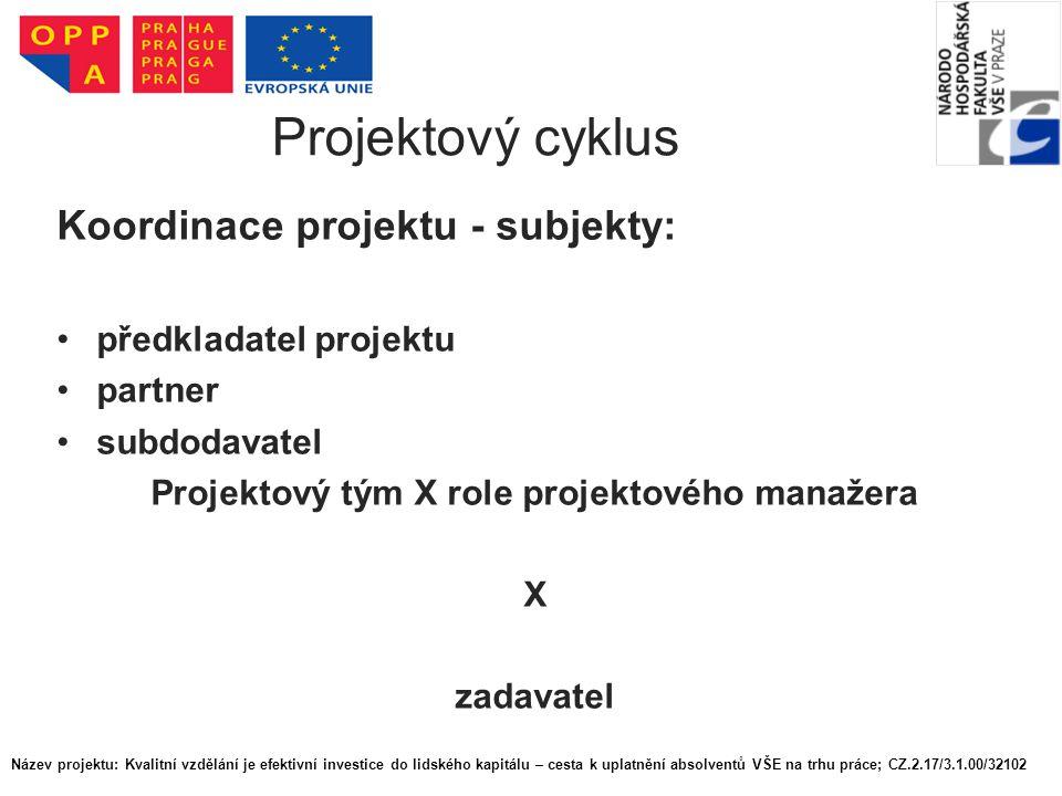 Projektový tým X role projektového manažera