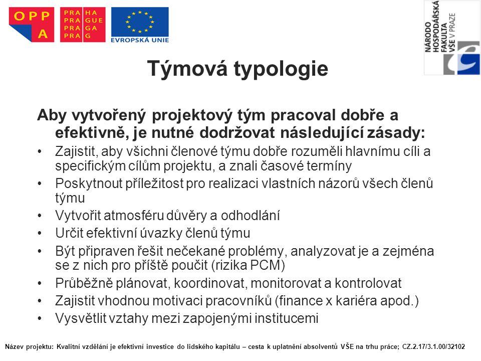 Týmová typologie Aby vytvořený projektový tým pracoval dobře a efektivně, je nutné dodržovat následující zásady: