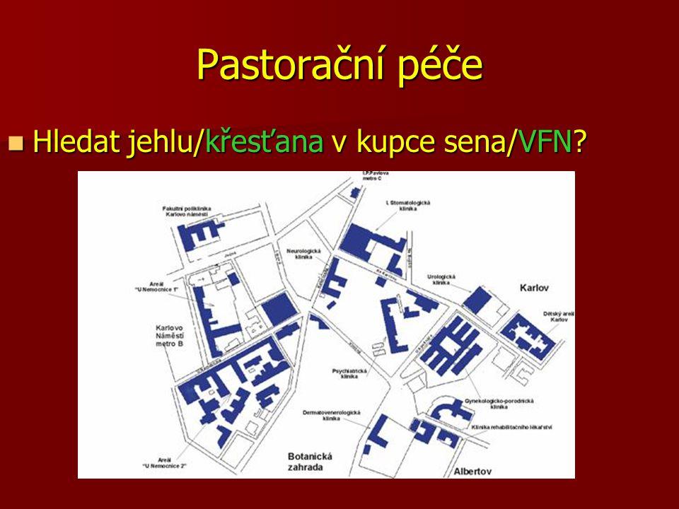 Pastorační péče Hledat jehlu/křesťana v kupce sena/VFN