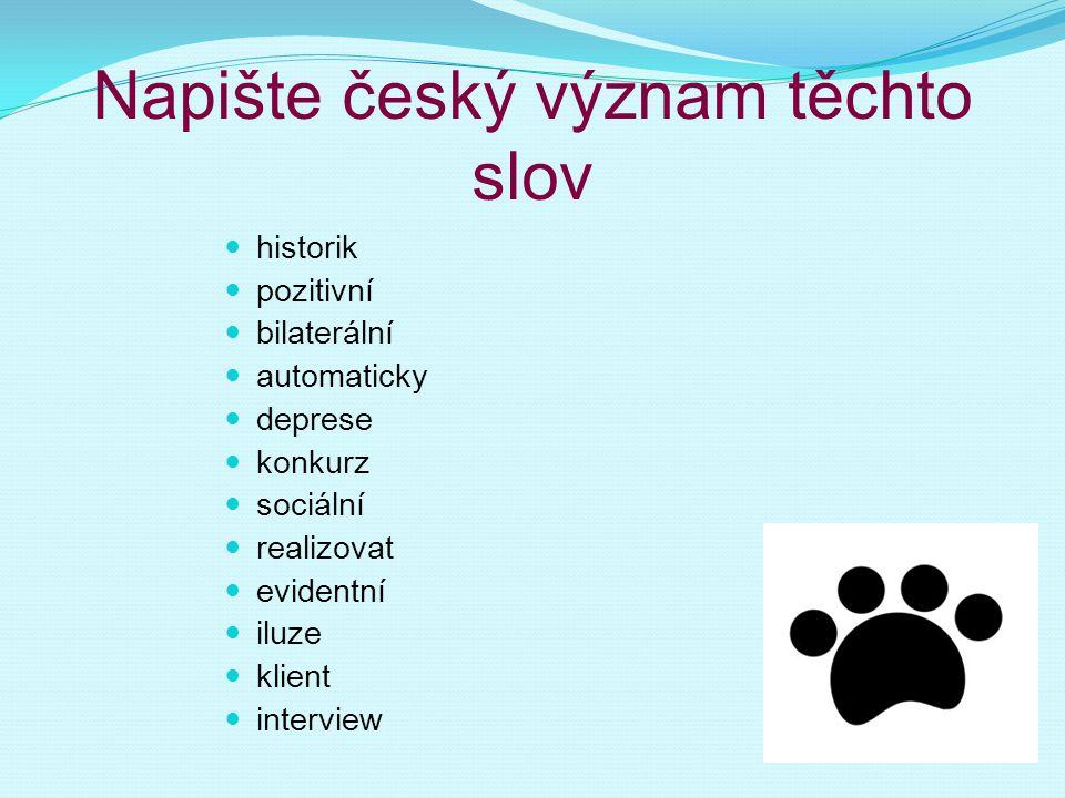 Napište český význam těchto slov