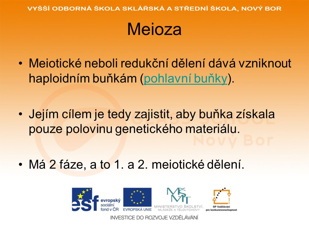 Meioza Meiotické neboli redukční dělení dává vzniknout haploidním buňkám (pohlavní buňky).