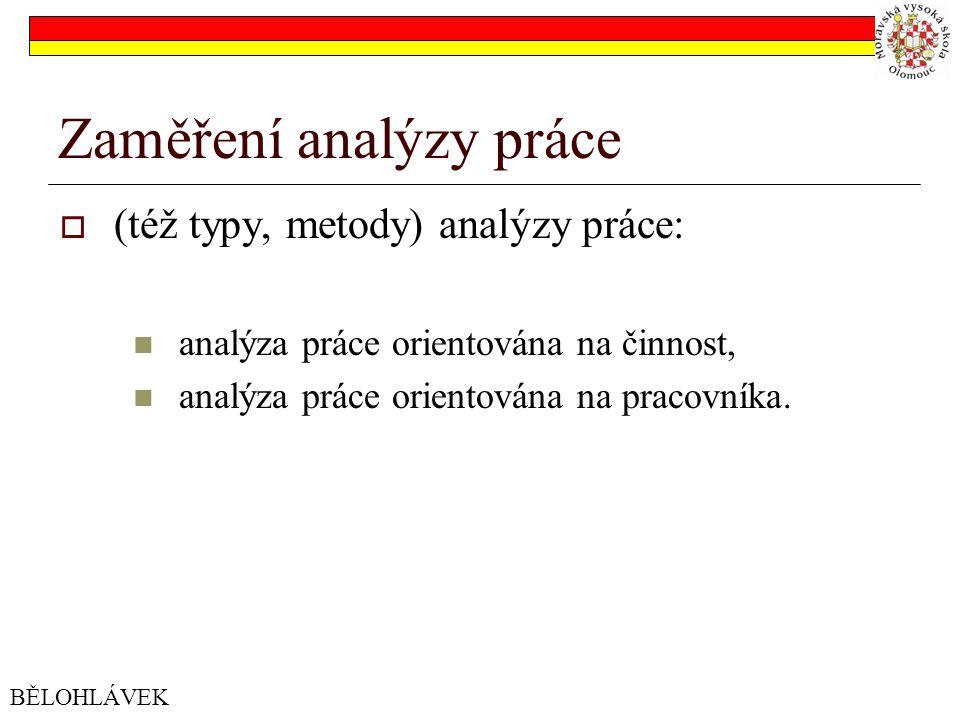 Zaměření analýzy práce