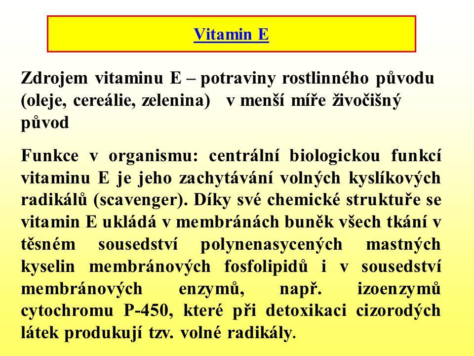 Vitamin E Zdrojem vitaminu E – potraviny rostlinného původu (oleje, cereálie, zelenina) v menší míře živočišný původ.