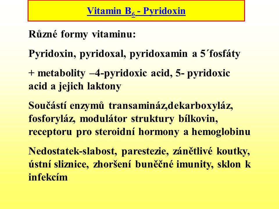 Pyridoxin, pyridoxal, pyridoxamin a 5´fosfáty