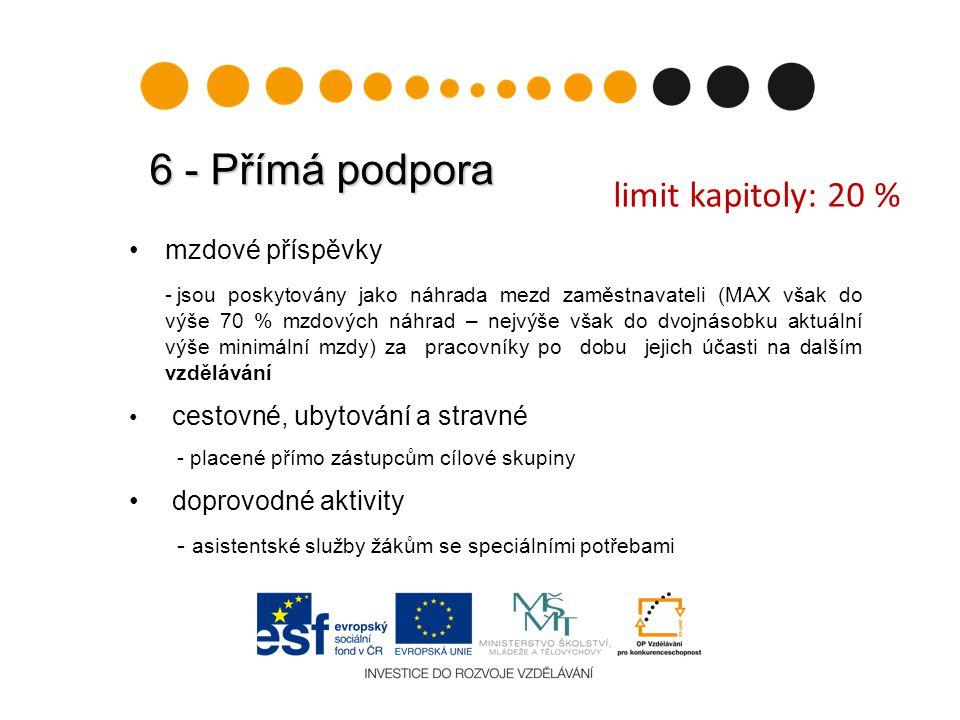 6 - Přímá podpora limit kapitoly: 20 % mzdové příspěvky