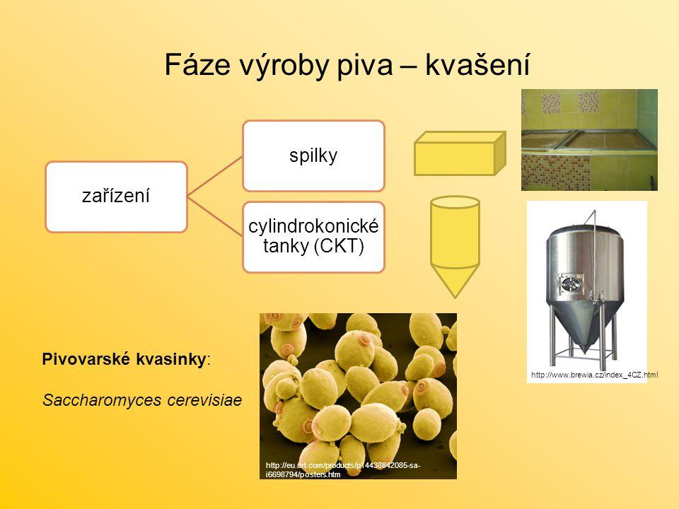 Fáze výroby piva – kvašení