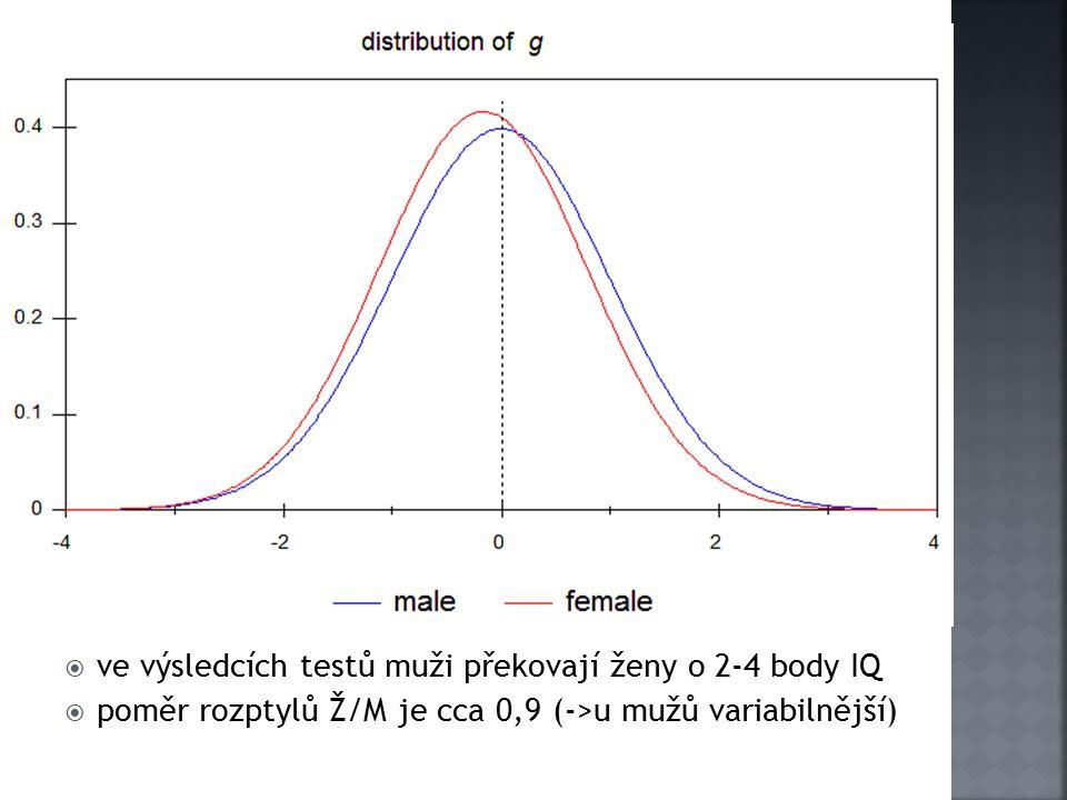 ve výsledcích testů muži překovají ženy o 2-4 body IQ