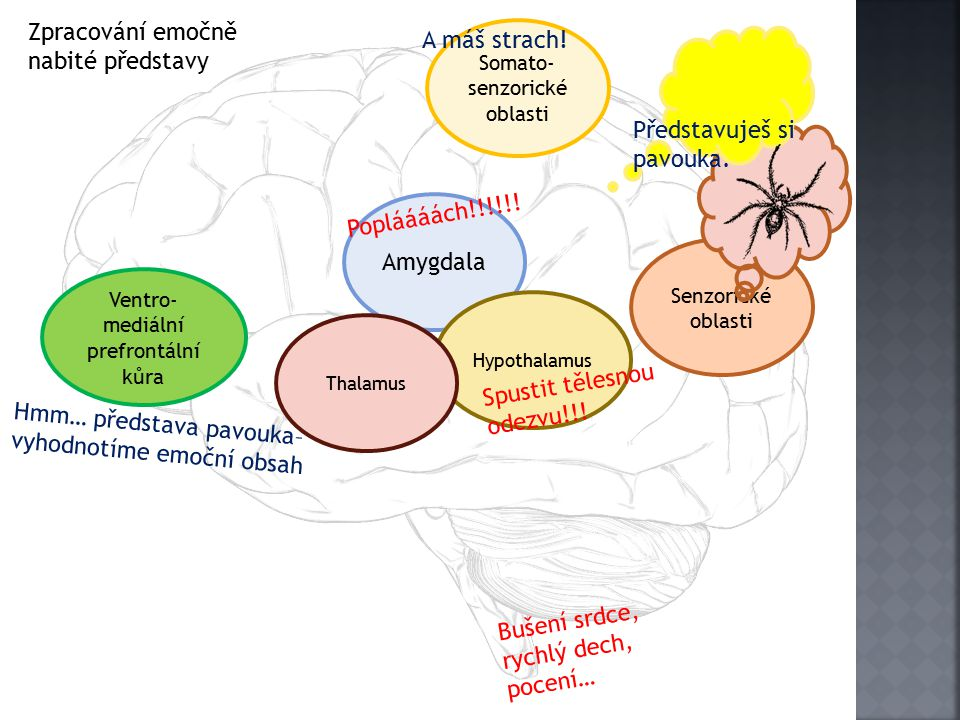 Zpracování emočně nabité představy A máš strach!