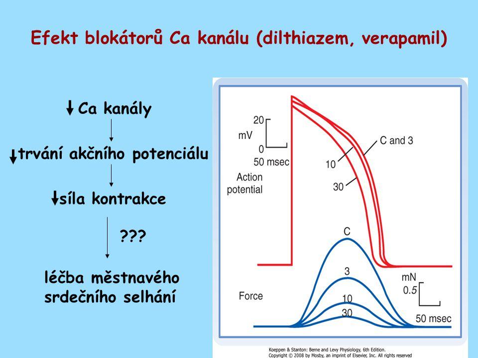 Efekt blokátorů Ca kanálu (dilthiazem, verapamil)