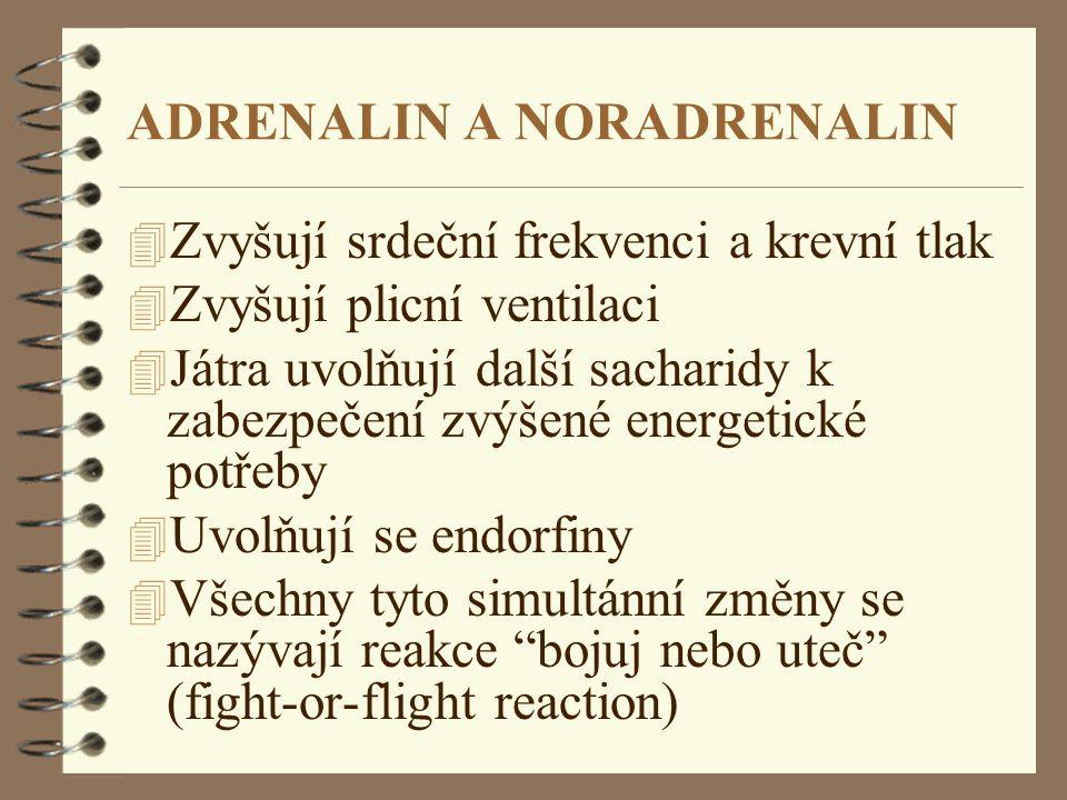 ADRENALIN A NORADRENALIN